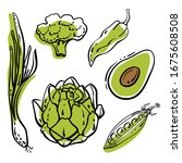 healthy green vegetables... | Shutterstock .eps vector #1675608508