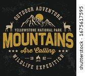outdoor adventure mountain... | Shutterstock .eps vector #1675617595