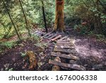 Wooden Steps  Part Of Hornad...