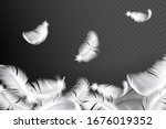 falling realistic feathers... | Shutterstock .eps vector #1676019352