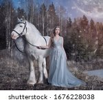 Art Photo Of A White Horse In ...