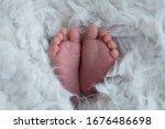 Baby Feet On Background. Feet...