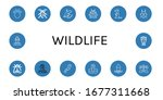 set of wildlife icons. such as... | Shutterstock .eps vector #1677311668