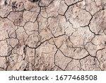 Dry Ground With Cracks. Global...