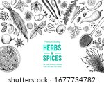 herbs and spices hand drawn... | Shutterstock .eps vector #1677734782