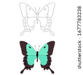 vector  isolated  butterfly ... | Shutterstock .eps vector #1677783238