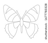 sketch  outline  butterfly ... | Shutterstock .eps vector #1677783328