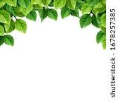 vector background with green... | Shutterstock .eps vector #1678257385