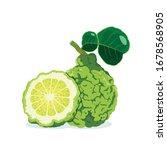 Kaffir Lime And Half Isolated...