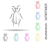 Desert Insect  Beetle Multi...