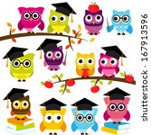 vector collection of school or... | Shutterstock .eps vector #167913596