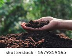 Hand Holding Soil In The Hands...