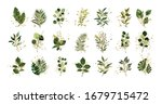 gold green tropical leaves... | Shutterstock .eps vector #1679715472