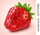 strawberry | Shutterstock .eps vector #167973986