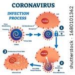 coronavirus infection process... | Shutterstock .eps vector #1680101362