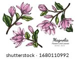 pink magnolia flower and leaf... | Shutterstock .eps vector #1680110992