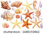 watercolor set of seashells ... | Shutterstock . vector #1680153862