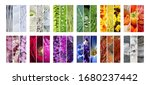 contemporary collection of...   Shutterstock . vector #1680237442