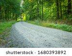 A Stone Gray Road Through A...