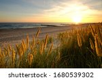 Baltic Sea  Dunes On A Sandy...