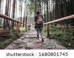 Woman Hiker Walking By Stone...