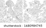 adult coloring pages. beautiful ... | Shutterstock .eps vector #1680984745