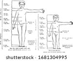 proportions of a health child's ... | Shutterstock .eps vector #1681304995