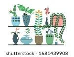 green plants in pots and vases... | Shutterstock .eps vector #1681439908