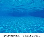 Underwater Photo  Of Swimming...