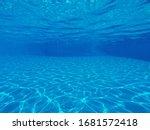 Underwater Photo  Of Swimming...