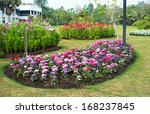 multicolored flowerbed on a... | Shutterstock . vector #168237845