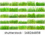 fresh green grass isolated on... | Shutterstock . vector #168266858