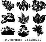 Постер, плакат: vector set of jungle
