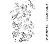 vector botanical illustration.... | Shutterstock .eps vector #1682930875