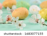Multi Colored Eggs And...