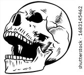 sketch line art of skull anatomy   Shutterstock .eps vector #1683145462