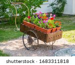 Flowerbed Stylized As An Old...