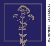 meadow grass. pink oregano.... | Shutterstock .eps vector #1683520252