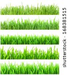 fresh green grass isolated on... | Shutterstock . vector #168381515