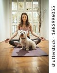 Small photo of Young woman is doing yoga meditation in the living room at home. She is meditating on floor mat in morning sunshine supporting by her pet dog.