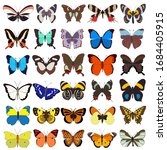 vector  isolated  butterflies ... | Shutterstock .eps vector #1684405915