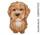 Labradoodle Puppy Digital Art...