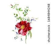 red peony  wild flowers...   Shutterstock . vector #1684844248