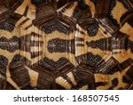 Stock photo tortoise shell in black brown and beige background 168507545