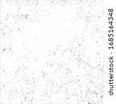 vector grunge black and white... | Shutterstock .eps vector #1685164348