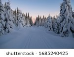 Magical Winter Landscape In...