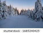 Magical Winter Landscape In...