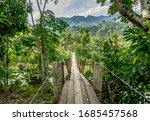 Wooden Scary Hanging Bridge In...