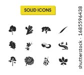 plant icons set with acacia...