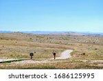 Little Bighorn  Mt   2016  Dee...
